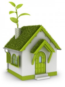 Healthy Home Environment | Green Home
